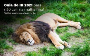 Guia Ir 2021 Para Nao Cair Na Malha Fina Saiba Mais Na Descricao Post 1 - Compliance Contábil